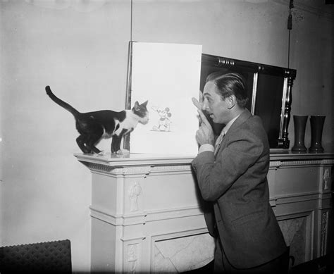 walt disney showing  picture  mickey mouse   cat