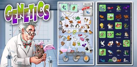 doodle castle combination genetics 187 android 365 free android