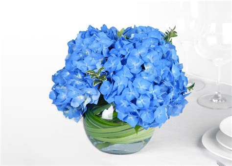 blue hydrangea centerpiece savvyish simple stylish wedding flowers blue hydrangea wedding centerpiece