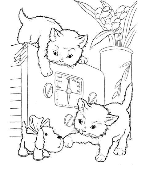 cat with kittens coloring page coloring pages cats and kittens coloring pages free and