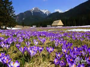 tatra national park holiday lettings rentals iha by owner