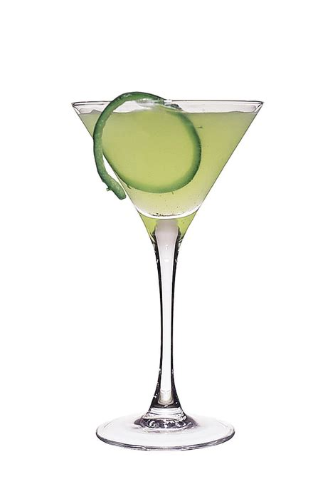 martini cucumber cucumber martini cocktail recipe