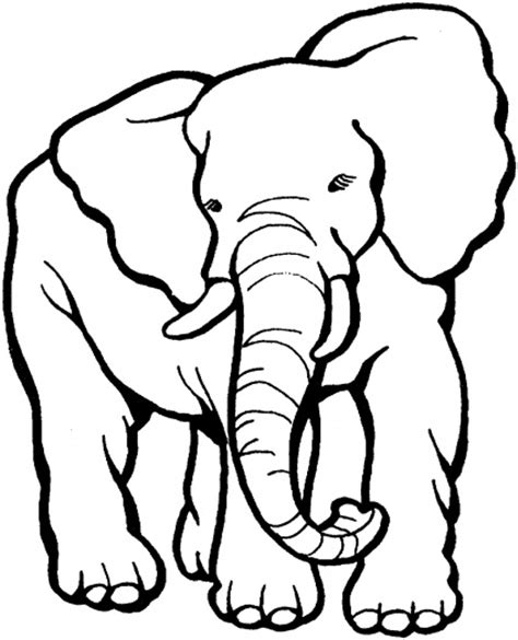 grey elephant coloring pages elephant tear gray tissue paper and glue on classroom