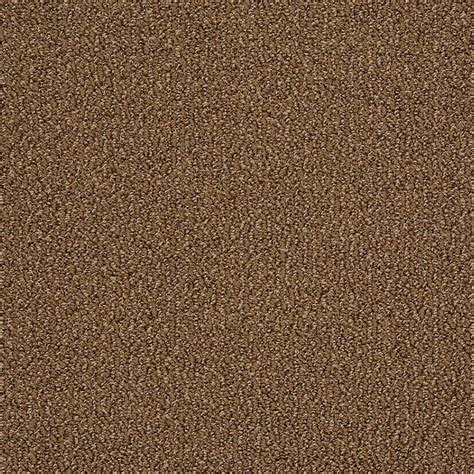 home decorators collection carpet sle braidley in color dried herbs 8 in x 8 in sh home decorators collection carpet sle braidley in