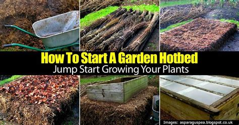 How To Start A Botanical Garden Vegetable Gardens For How To Start A Botanical Garden