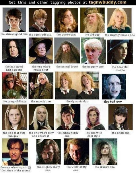 best harry potter characters list of favorite characters sexy cats and the guys on pinterest