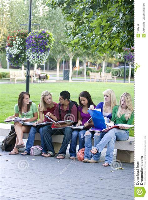 student benches student benches 28 images benches dynamic concepts
