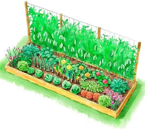 Raised Vegetable Garden Planner 10 Raised Garden Bed Plans For A Year Vegetable Garden