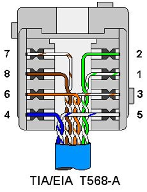 cat5e wiring diagram wall plate 1000 images about ham radio emergency communication on