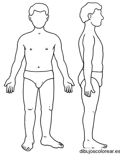 desenho corpo dibujos cuerpo humano