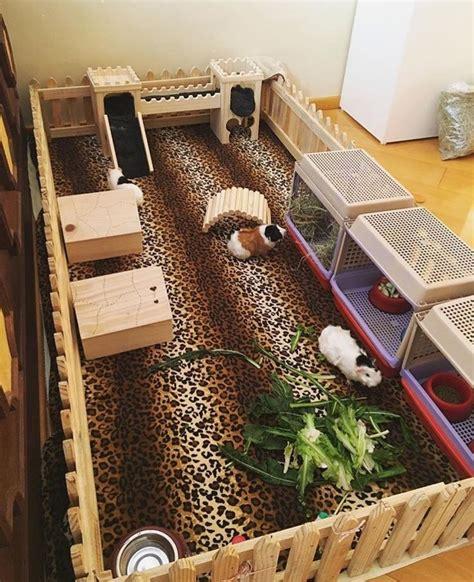 guinea pig bedding ideas best 25 guinea pig hutch ideas on pinterest guinea pig