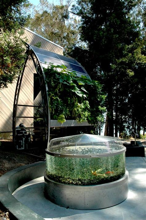 Solar Powered Hydroponic And Aquaponic Edible Wall Garden Hydroponic Wall Garden
