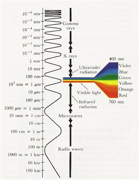 Electromagnetic L by The Electromagnetic Spectrum