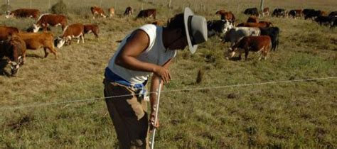 aumento de peon rural 2016 saladillo co el gremio de peones rurales logr 243 un