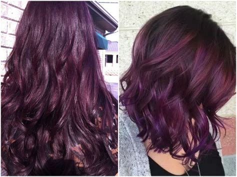 purple black hair color 60 burgundy hair color ideas maroon purple plum