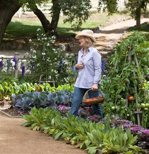 Ornamental Vegetable Garden 688 Best Beautiful Vegetable Gardens Images On