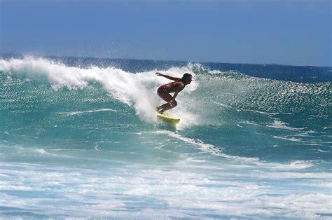 surfschool brouwersdam surfscholen nederland surfavonturen nl