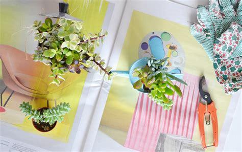 vaso per piante grasse riciclo creativo come trasformare vecchi contenitori in