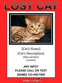 Lost Cat Poster Template missing cat poster template www imgkid the image