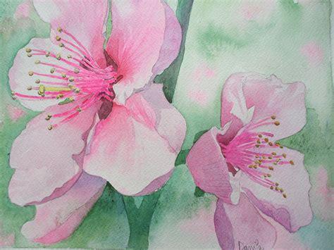 fiori di ciliegio giapponesi fiori di ciliegio giapponese estri in laboratorio