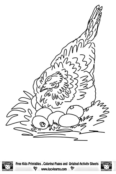 chicken coloring page lumedia co coloring pages for chickens cliparts co