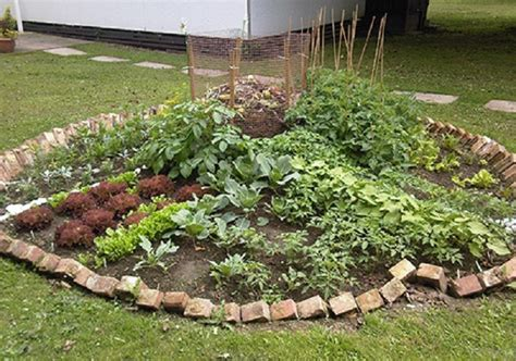 Keyhole Gardening by Keyhole Garden A Patch Of Soil Some Seeds