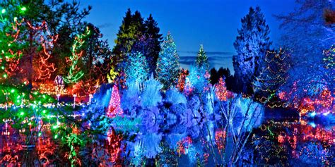 Festival Of Lights At Vandusen Botanical Garden Things To Do In Vancouver Lights Photos