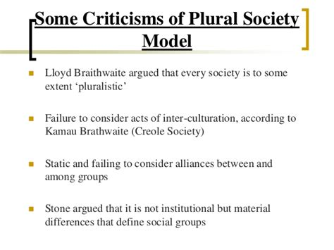 what is the plural of thesis what is the plural society thesis