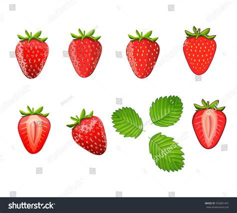 Set Strawberry set strawberries different styles strawberries illustrations stock vector 353801441
