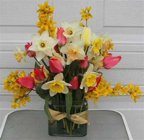 homemade flower preservative homemade floral preservative and spring daffodil