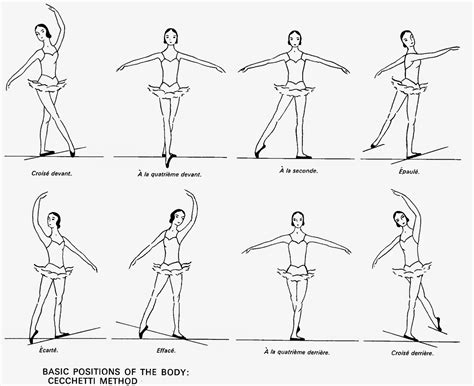 Sepatu Balet Prima ballerina ballet alignments ceccheti method