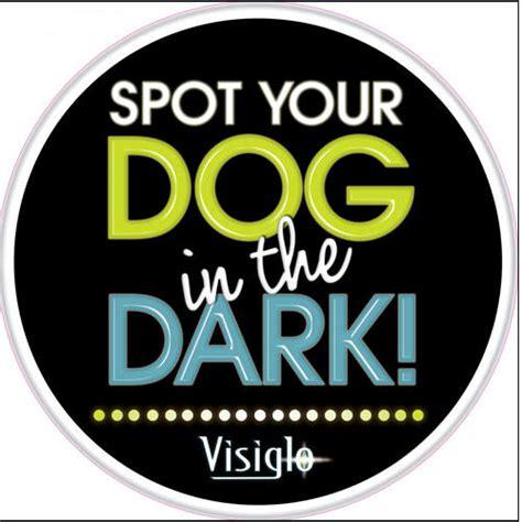 Visiglo Led Lighted Leash Keepdoggiesafe Com