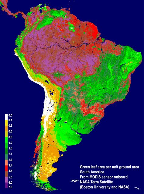 map of rainforest in south america