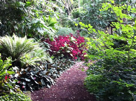 Flower Garden Sydney Sydney Royal Botanic Gardens Autumn Colours Routes And Trips