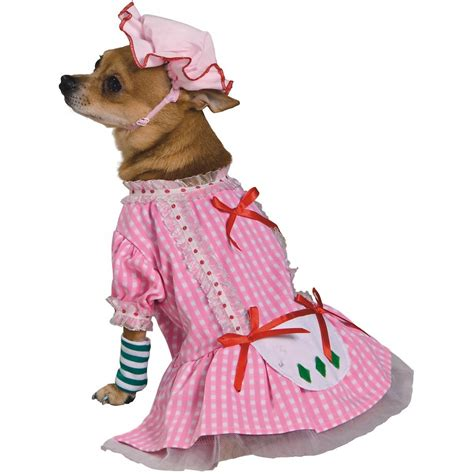 are strawberries bad for dogs strawberry shortcake costume for pet must beds and costumes