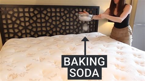 How To Stop Mold In Bedroom by How To Get Rid Of Mold In Your Bedroom Www Indiepedia Org