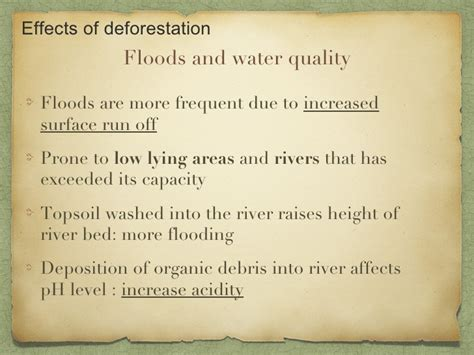 Causes And Effect Of Deforestation Essay by Essay Deforestation Effects Writefiction581 Web Fc2