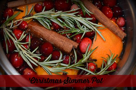 simmer pot recipes christmas simmer pot marinobambinos