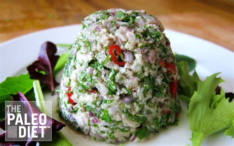 the paleo easy vegetarian recipes for a paleo lifestyle books mackerel tartare paleo recipe for common cold prevention