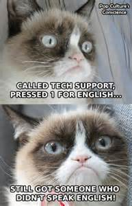 Funny cats top 49 most funny grumpy cat pictures with words