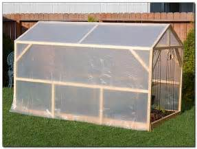 green house plans homemade greenhouse selecting the best greenhouse covering interior design inspiration