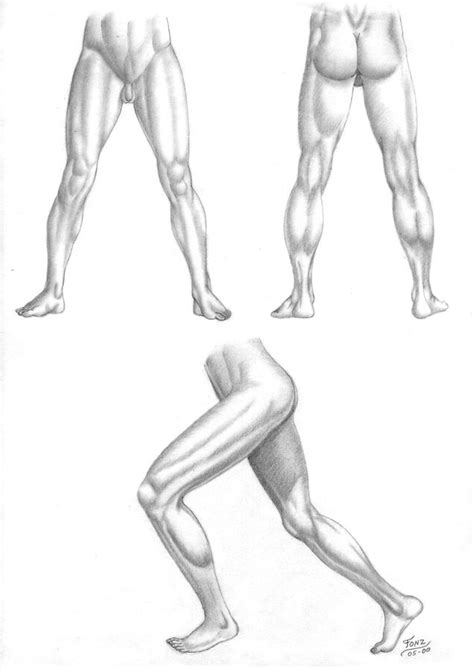 Drawing Legs by 352 Best Drawing Legs Images On Drawing Legs