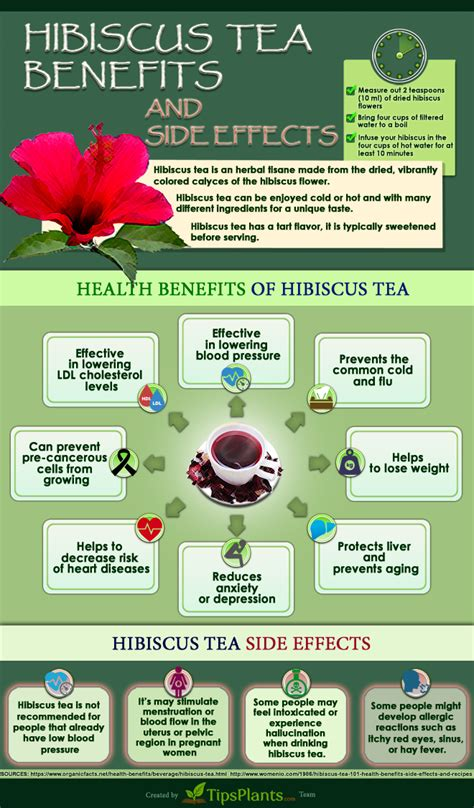 best way to find friends with benefits easy way to about hibiscus tea benefits infographic