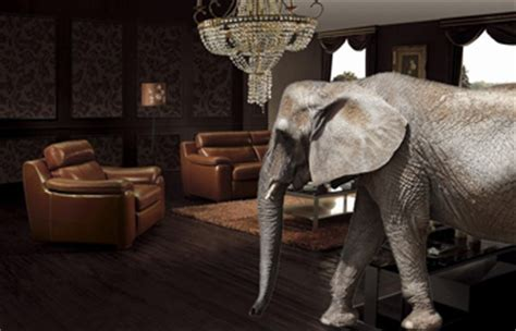 Elephant In The Living Room by The Elephant In The Alternative Investment Living Room
