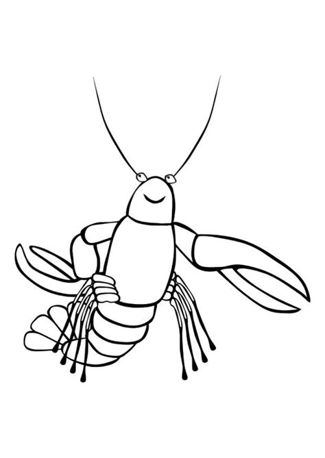 coloring page lobster img 10172