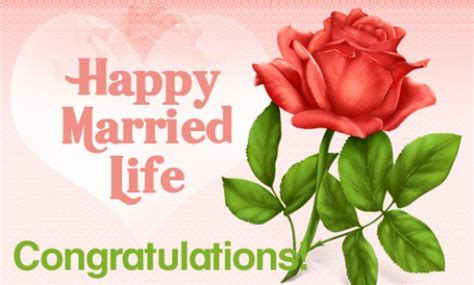 happy married greetings wedding wishes for a newly married exles of wedding wishes and greetings