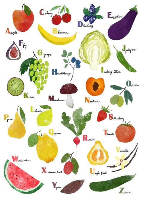 h vegetables or fruit fruit and vegetables alphabet an print by