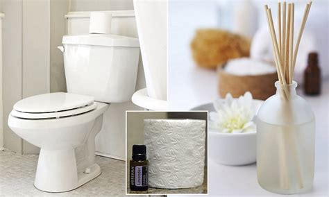 bathroom always smells eau de toilet roll the very cheap and simple essential