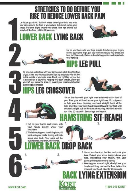 lower back stretches in bed 10 best images about training on pinterest male physique lower backs and weightlifting