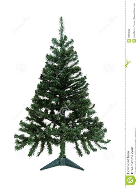 christmas pine tree for decoration royalty free stock